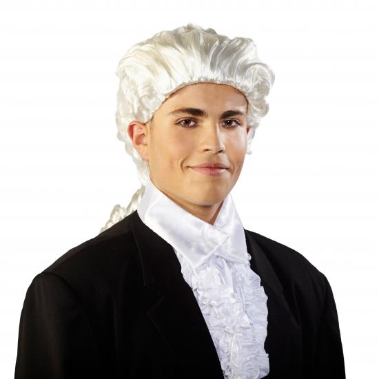 Carnaval Mozart pruik met staart