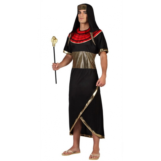 Farao carnavals pakken