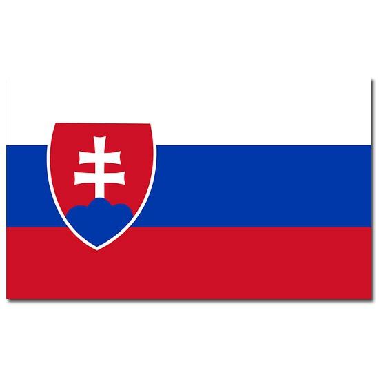 Vlag Slowakije 90 x 150 cm