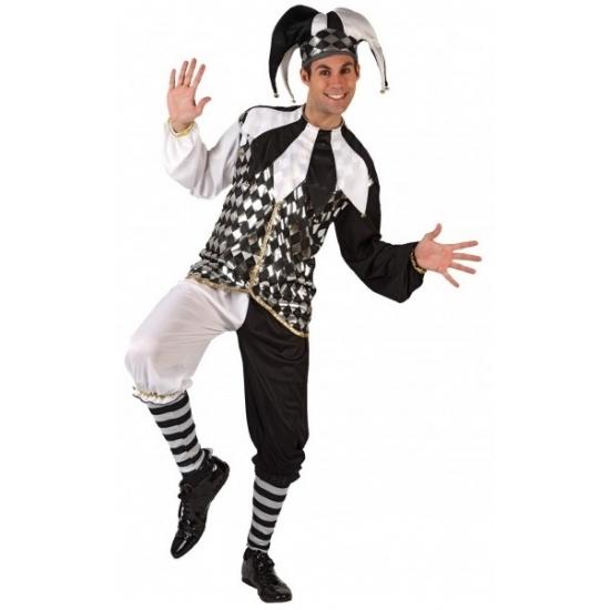 Carnaval Harlekijn kostuum voor heren