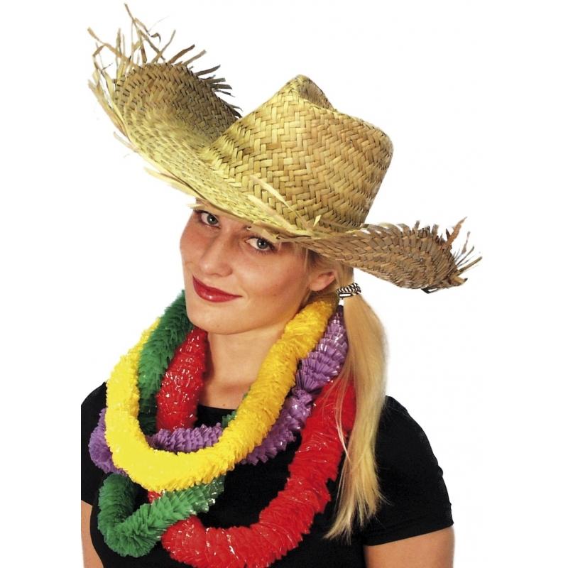 carnaval-hawaii-of-strandhoed