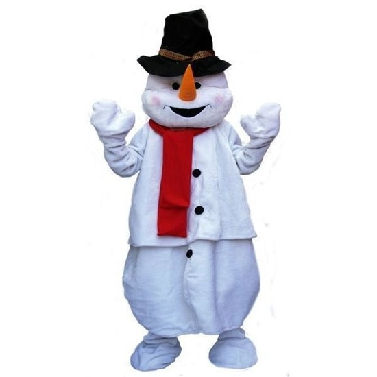 Carnaval Pluche sneeuwpop kostuum