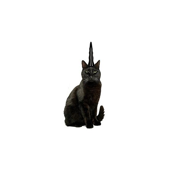 Zwarte eenhoorn hoorn voor je kat. de zwarte hoorn is ca. 14 cm lang wanneer deze opgeblazen is en heeft ...