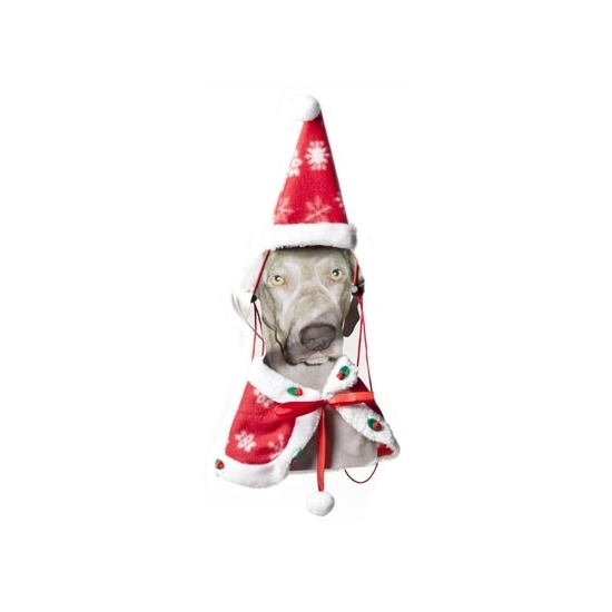 Kerst Kerst cape en kerstmuts voor de hond