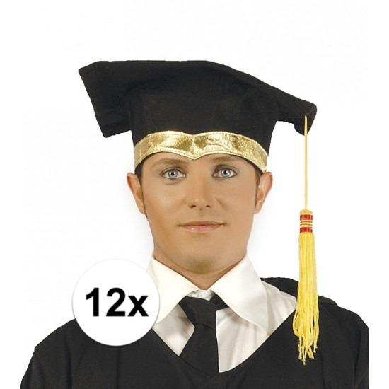 12x Luxe afstudeerhoedje - geslaagd hoedje met gouden details