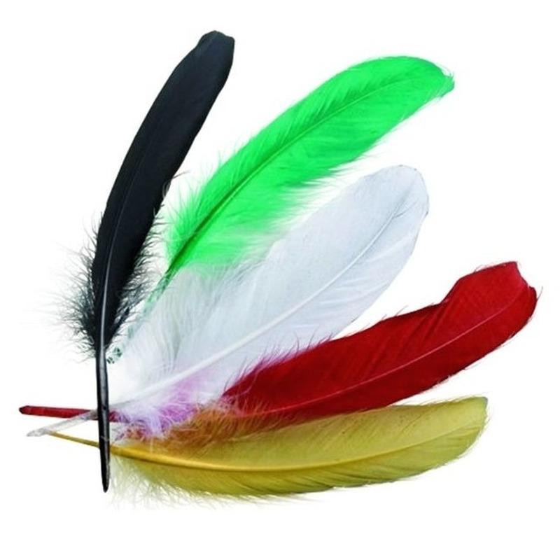 15x stuks gekleurde indianenveren 16 cm