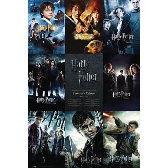 Decoratie poster Harry Potter 61 x 91 cm