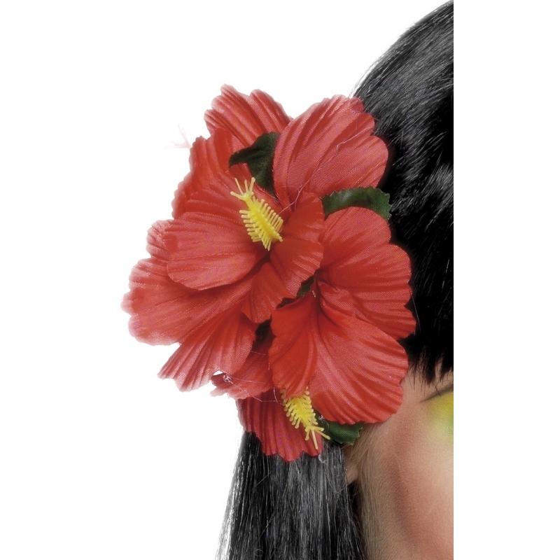 Haarbloemen hawaii feestje