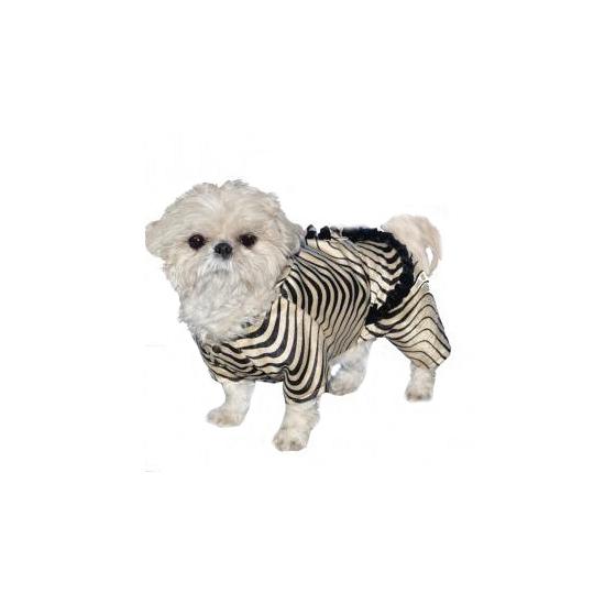 Honden verkleed zebra pak