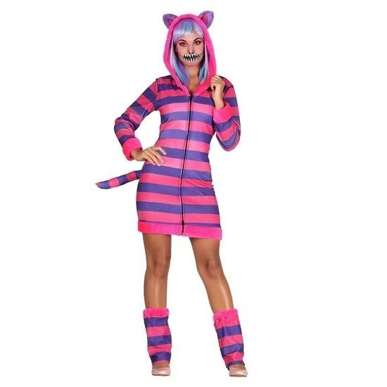 Verkleedset kat/poes gestreept voor dames