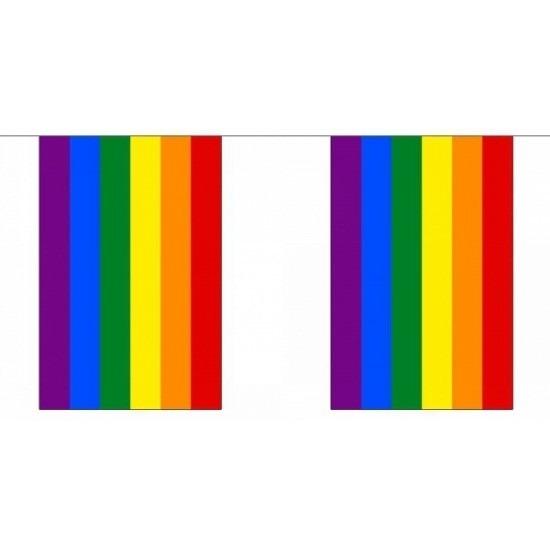 Vierkante regenbogen vlaggenlijn 72 m